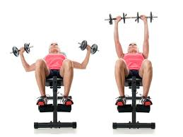 Bench Press Weight For Beginners Dumbbell Exercises For Weight Lifting Beginners Fitness Republic