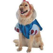 Disney Halloween Costumes Dogs 15 Disney Dog Costumes Images Animals
