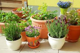 Herb Garden Pot Ideas 35 Herb Container Gardens Pots Planters Saturday Inspiration Herb