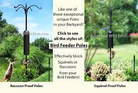 backyard wild birds bird feeder poles with bird feeders