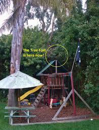 apple syrup breaking news tree fort appears in backyard