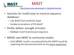 Meme Motif Search - motif discovery tutorial 5 motif discovery meme creates motif