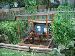 Beautiful Backyards Layout Of Small Vegetable Garden Beautiful Backyards Outstanding
