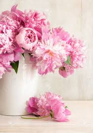 The Pink Peonies by Pink Peonies In Vase On Wood Background Stock Photo Picture And