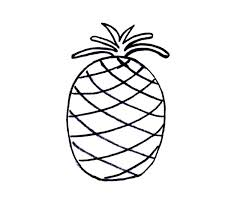 simple drawing of pineapple coloring page download u0026 print