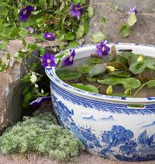 Container Water Garden Ideas Planting Tips Ideas For A Container Water Garden The