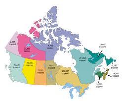 canadian statistics the fur bearers