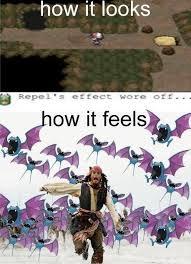 Zubat Meme - caves in pokemon kill the hydra
