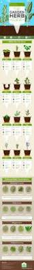 best 25 herb planters ideas on pinterest growing herbs indoors this one infographic will change your homegrown herb game
