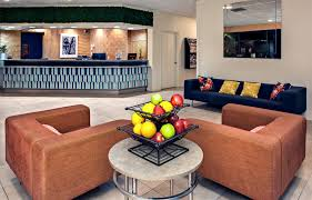 pet friendly hotels phoenix az about hotel 502