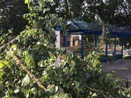 Wetter Bad Friedrichshall Nach Dem Unwetter Waldschäden Und Aufräumarbeiten Stimme De