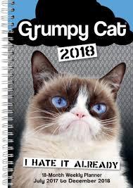 Grumpy Cat New Years Meme - grumpy cat 2018 desk pad planner calendar cd0296 grumpy cat