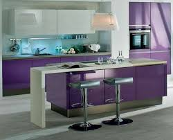 purple kitchen cabinets interesting modern quirky simple
