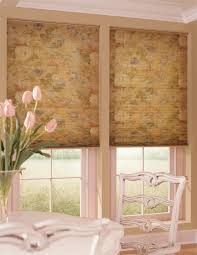 Pleated Blinds Pleated Shades And Pleated Blinds Blinds Express