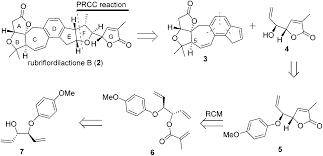 a highly efficient synthesis of the defg ring system of