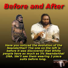 Meme Gallery - neanderthal evolution meme the whirling windthe whirling wind