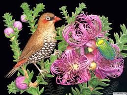 Flower And Bird - bird and flower birds animals background wallpapers on desktop