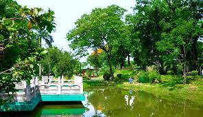 triyae com u003d backyard fish pond in the philippines various