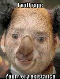 Nick Cage Memes - here s nicolas cage merged with a koala 104016122 added by