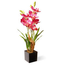 25 purple pink orchid flowers national tree company target