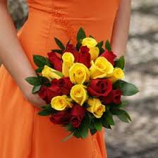 global roses best 25 and yellow roses ideas on
