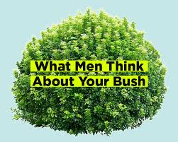 how to color mens pubic hair what guys really think about your pubic hair