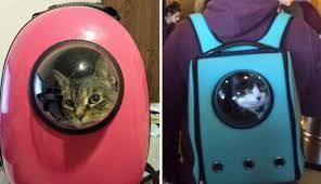 colorful safe cat backpacks feature bubble window for traveling
