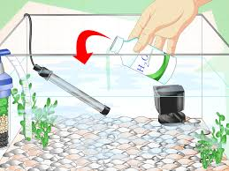 how to fix cloudy aquarium water with pictures wikihow