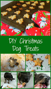 112 best diy dog projects images on pinterest dogs diy dog