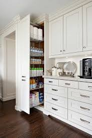 pull out cabinets kitchen pantry 20 amazing modern kitchen cabinet design ideas raised panel