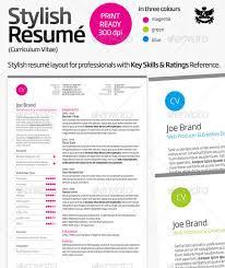 2 page resumes free basic resume templates