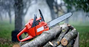 tree removal service edj service llc