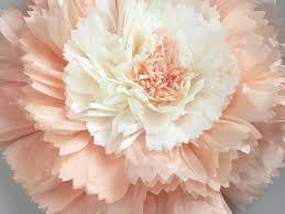 paper flowers last chance tissue paper flower carnation sola wood
