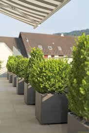 modern outdoor planters spaces farmhouse with boxwood planters