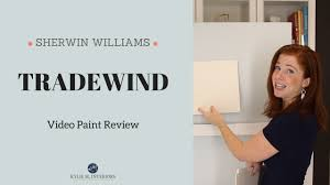 colour review sherwin williams tradewind kylie m interiors