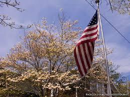 Deleware Flag Isn U0027t It Spring Yet The Photo Tourist