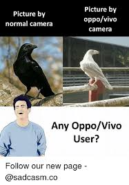 User Memes - picture by normal camera picture by oppovivo camera any oppovivo