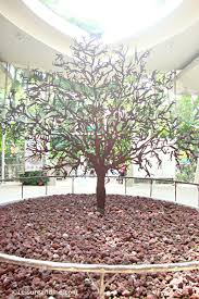 Botanical Gardens In Singapore by Jacob Ballas Children U0027s Garden In Singapore Botanic Gardens