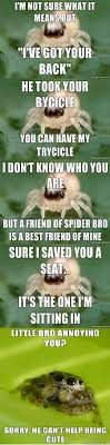 Spider Bro Meme - little spider bro