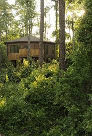 Disney Saratoga Springs Treehouse Villas Floor Plan 26 Best Walt Disney World Hotels Images On Pinterest Walt Disney