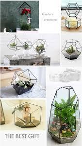 desktop clear glass prism air plant terrarium tabletop succulent