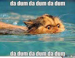 Shark Attack Meme - meme center largest creative humor community shark attacks