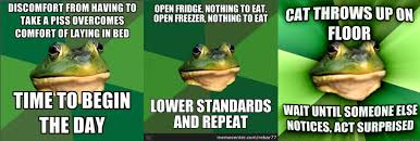 Bachelor Frog Memes - nationstates dispatch foul bachelor frog