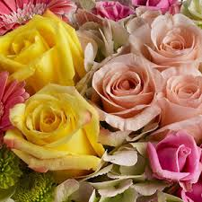 florist shops norristown florist flower delivery by plaza flowers