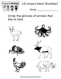science printables for kids life science animal worksheet free