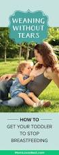 Stop Comfort Nursing Weaning Without Tears How To Stop Breastfeeding A Toddler
