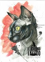 sphynx cat tattoo by tylerrthemesmer on deviantart