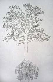 a new sketching adventure u2013 drawing trees larry d marshall