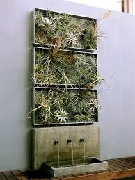 living wall art vertical garden frames by airplantman design milk