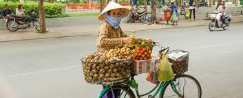 expat exchange houses for sale in vietnam houses for rent in